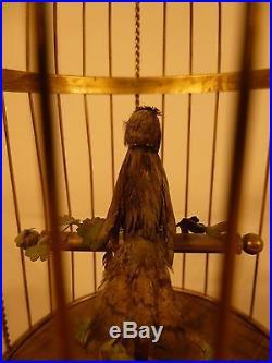 Bontems, Griesbaum Era Antique Singing Bird Automaton In Gilded Cage